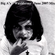 Waxidermy 2007